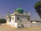 Hz. Bandagi Meeran Syed Mahmood Sani-e-Mahdi RZA